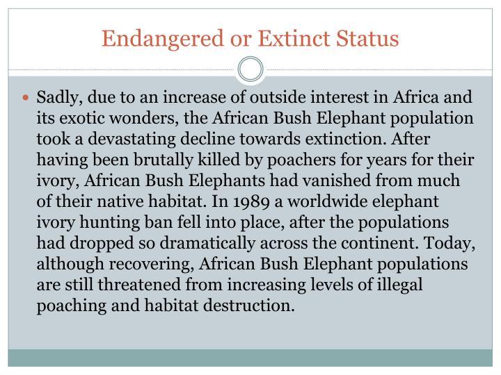Endangered or Extinct Status