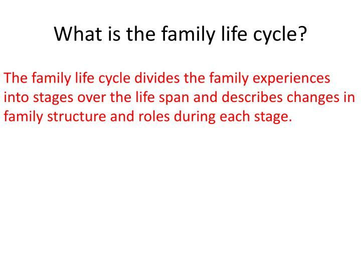 What is the family life cycle?