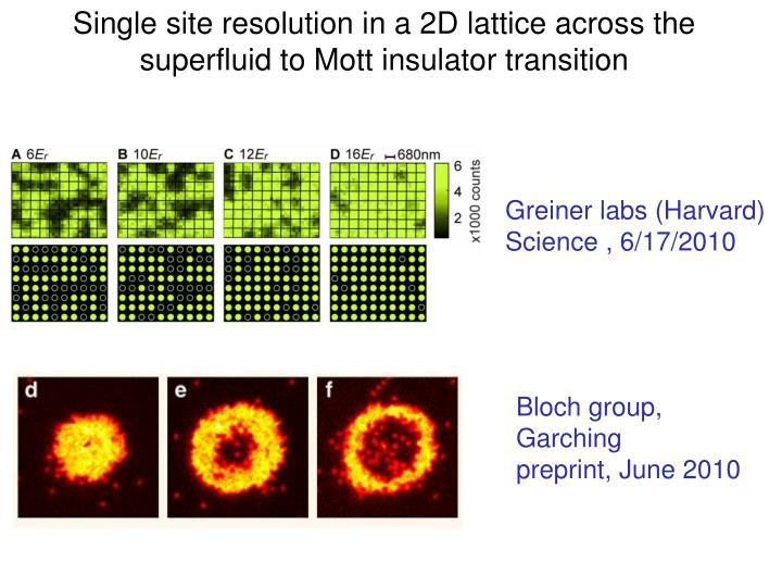 Single site resolution in a 2D lattice across the superfluid to Mott insulator transition