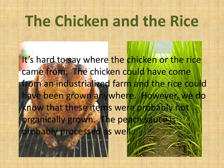 The Chicken and the Rice