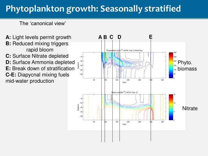 Phytoplankton growth: Seasonally stratified