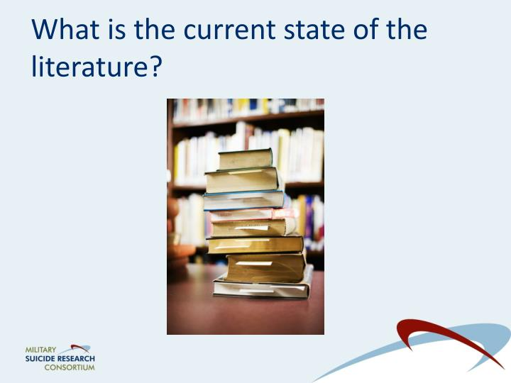 What is the current state of the literature?