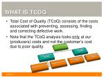 what is tcoq
