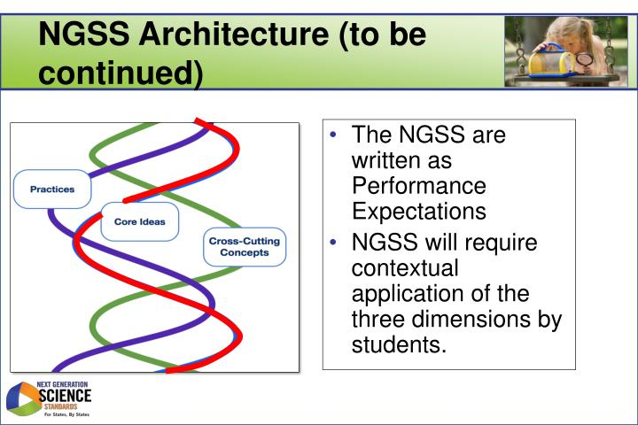 NGSS Architecture (to be continued)