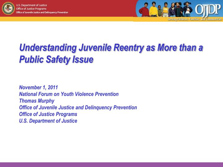 understanding juvenile reentry as more than a public safety issue n.