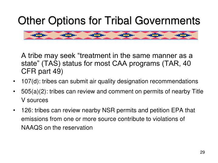 Other Options for Tribal Governments