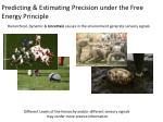 predicting estimating precision under the free energy principle