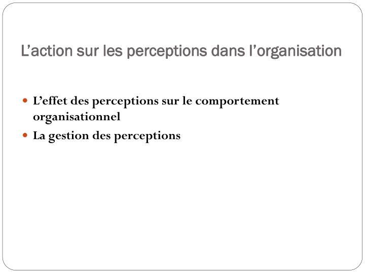 L'action sur les perceptions dans l'organisation