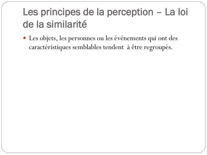 Les principes de la perception – La loi de la similarité