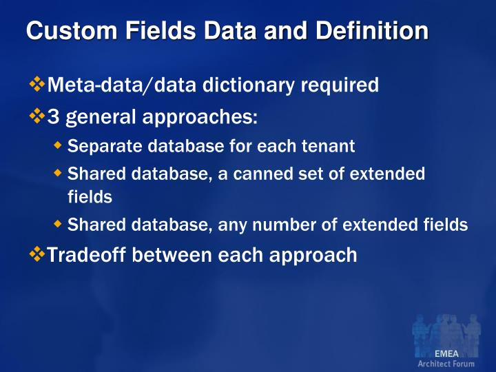 Custom Fields Data and Definition