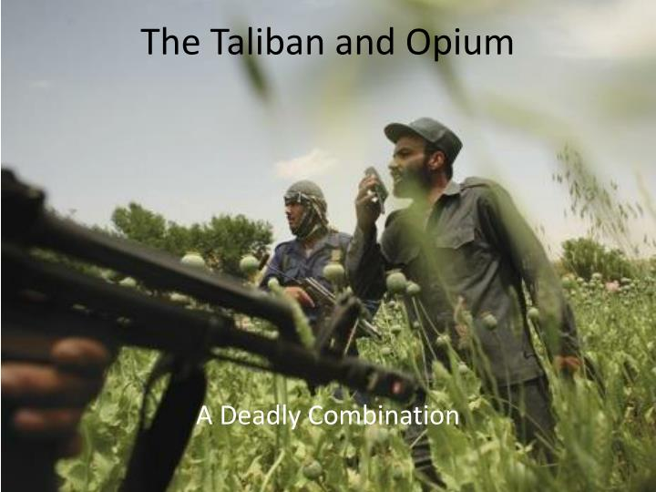 the taliban and opium n.