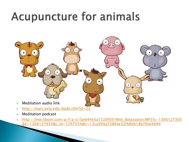 Acupuncture for animals