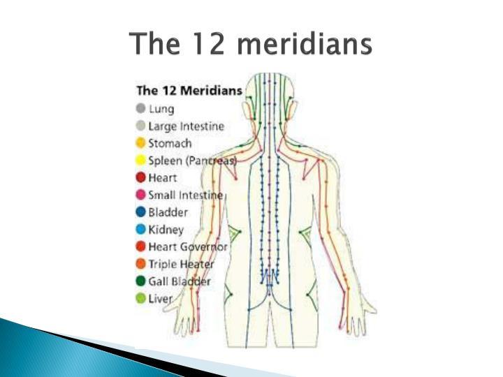 The 12 meridians