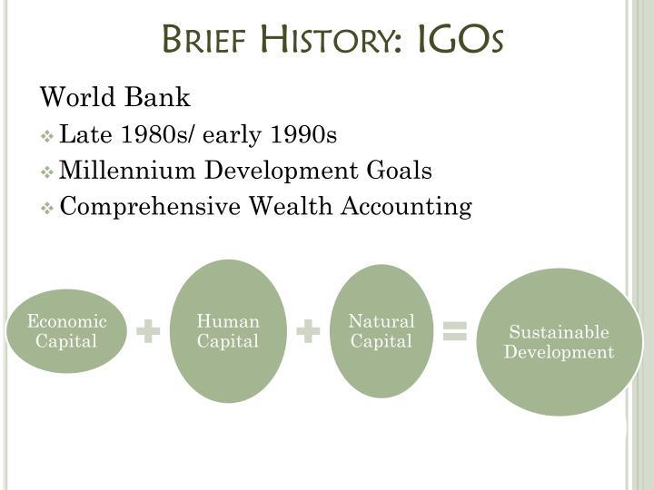 Brief History: IGOs