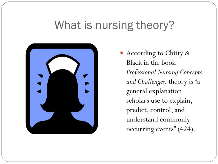 what is nursing theory