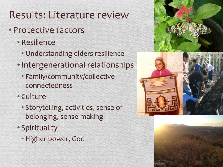 Results: Literature review