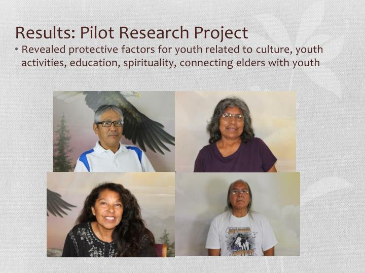 Results: Pilot Research Project