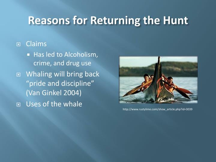 Reasons for Returning the Hunt