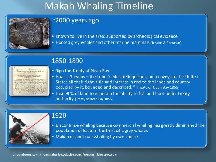 Makah Whaling Timeline