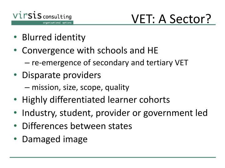 VET: A Sector?