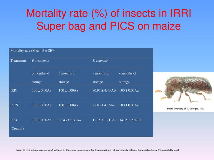 Mortality rate (%) of insects