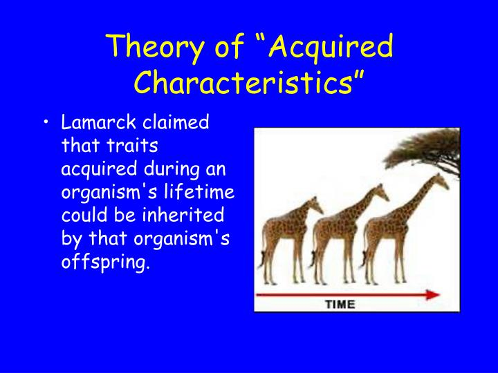 """Theory of """"Acquired Characteristics"""""""