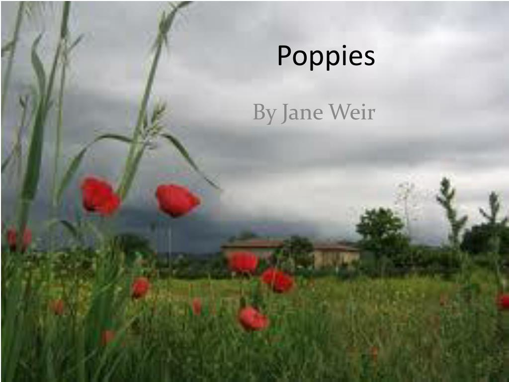 when was poppies by jane weir published