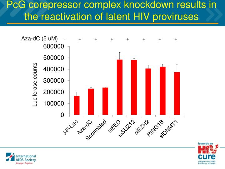 PcG corepressor complex knockdown results in the reactivation of latent HIV proviruses