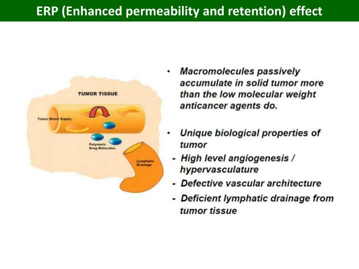 ERP (Enhanced permeability and retention) effect