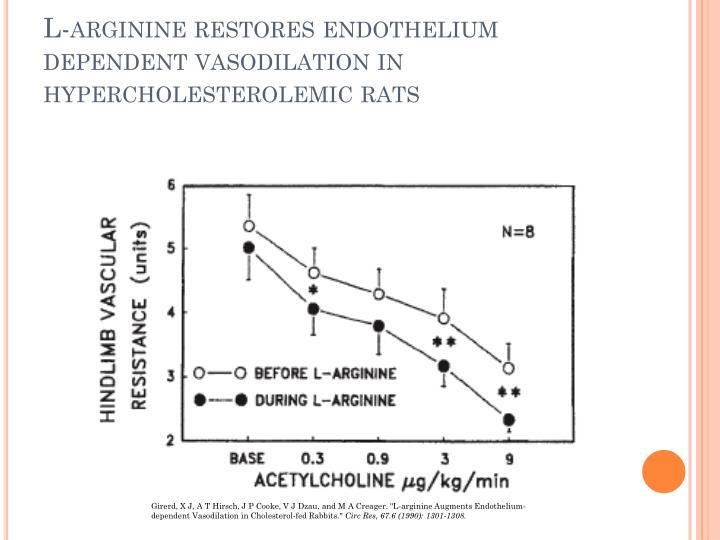 L-arginine restores endothelium dependent