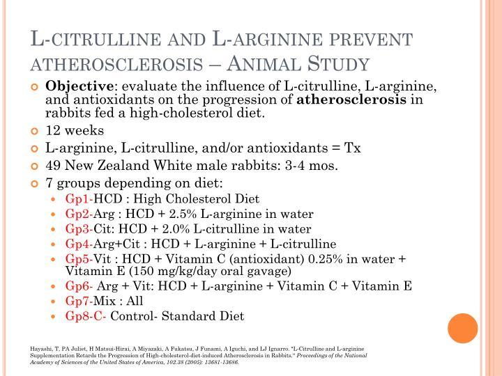 L-citrulline and L-arginine prevent atherosclerosis – Animal Study