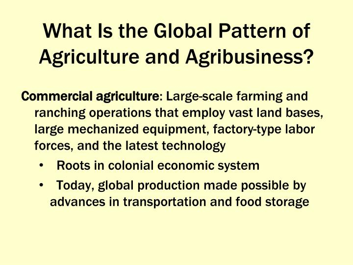 What Is the Global Pattern of Agriculture and Agribusiness?