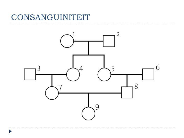 consanguiniteit