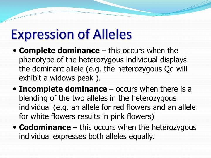 Ppt meiosis and variation powerpoint presentation id1917233 expression of alleles ccuart Choice Image