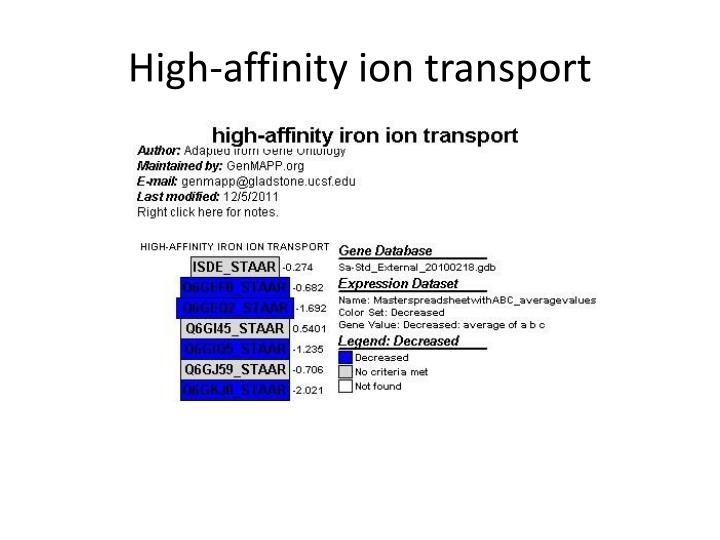 High-affinity ion transport