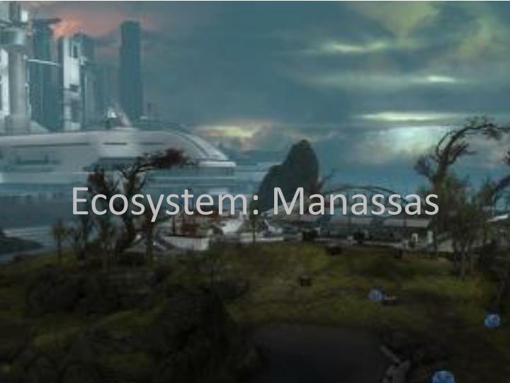 Ecosystem manassas