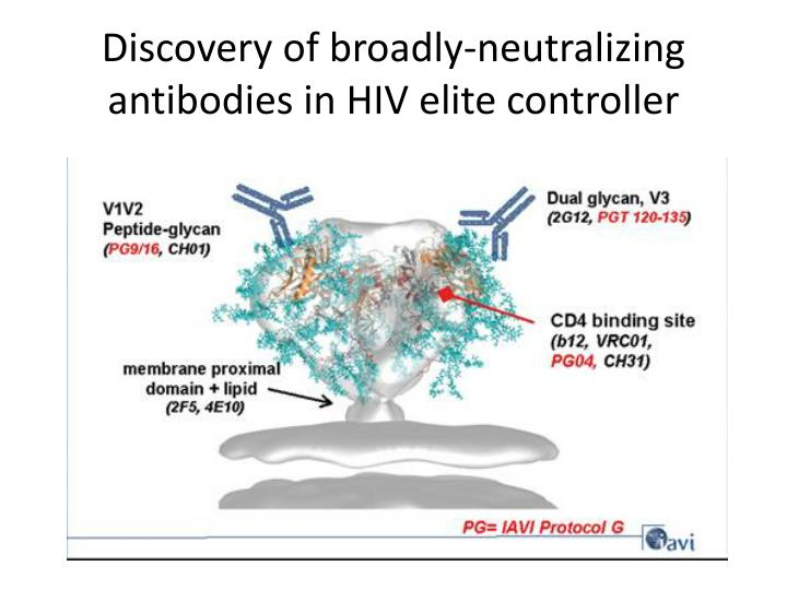 Discovery of broadly-neutralizing antibodies in HIV elite controller
