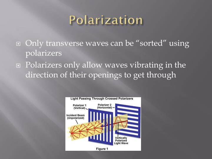 polarization n.