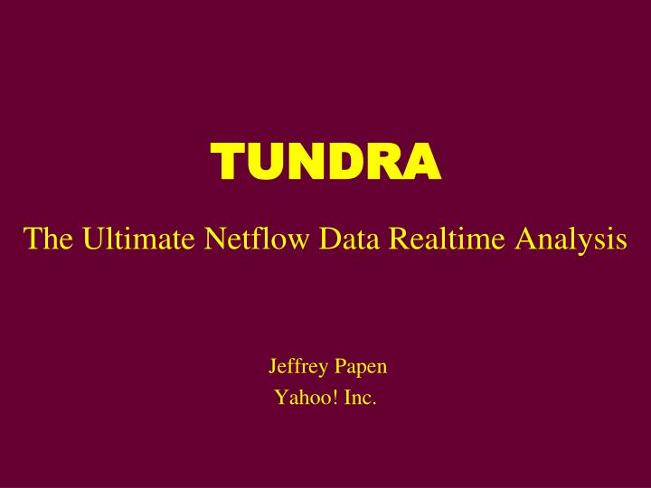 Tundra the ultimate netflow data realtime analysis