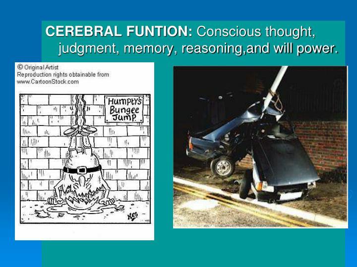 CEREBRAL FUNTION: