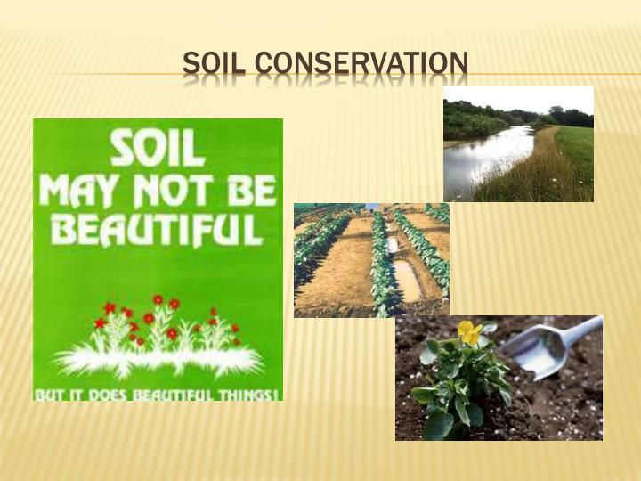 Ppt Soil Conservation Powerpoint Presentation Free Download Id 1920398
