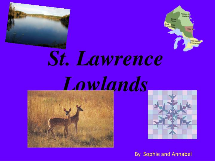 st lawrence lowlands n.