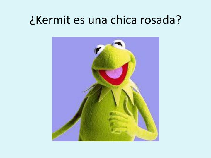 ¿Kermit