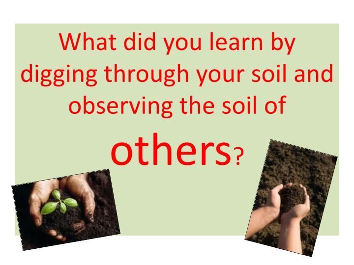 What did you learn by digging through your soil and observing the soil of