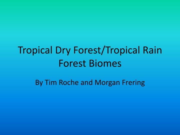 tropical dry forest tropical rain forest biomes n.