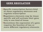 gene regulation2