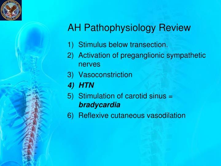 AH Pathophysiology Review