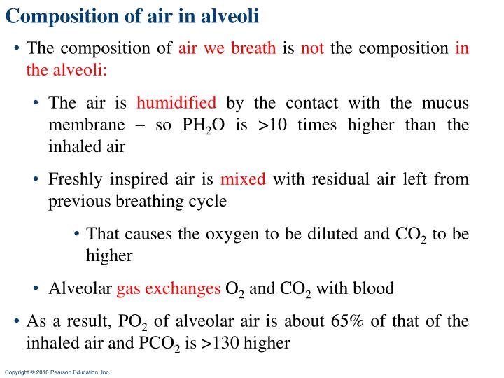 Composition of air in alveoli