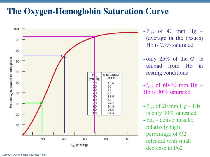 The Oxygen-Hemoglobin Saturation Curve