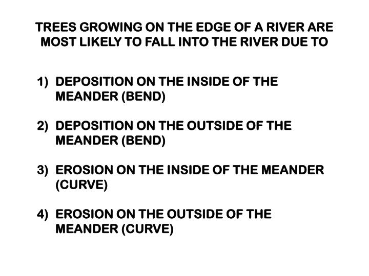 TREES GROWING ON THE EDGE OF A RIVER ARE MOST LIKELY TO FALL INTO THE RIVER DUE TO